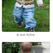 Review Where the Wild Sheep Roam (Screenshot taken from Ravelry)