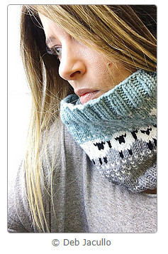 I'll Pack a Cowl for Rhinebeck by Deb Jacullo (screenshot from Ravelry)
